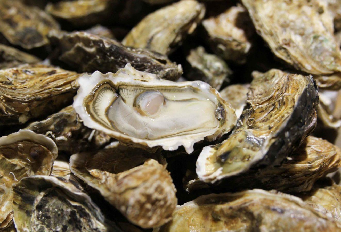 Fournisseurs de la poissonnerie- Huîtres fines de Claire Gaboriau