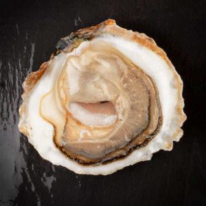 """Huîtres Bio plates """"Belon"""", vente en ligne de bourriches d'huîtres - poissonnerie Morin marée Albi"""