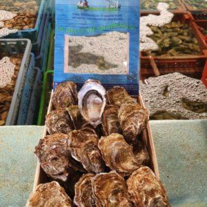 Huîtres Bio Creuses de Quiberon N°3, vente en ligne de bourriches d'huîtres - poissonnerie Morin marée Albi