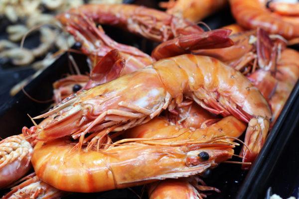 Camerone - vente en ligne de fruits de mer poissonnerie Morin marée albi