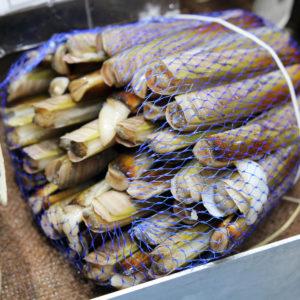 couteaux, vente en ligne de fruits de mer cru, click and collect sur Albi et environs