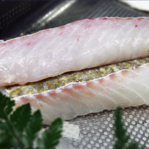 Dos de cabillaud, vente de poisson frais, pêche responsable - poissonnerie albi - dos de cabillaud