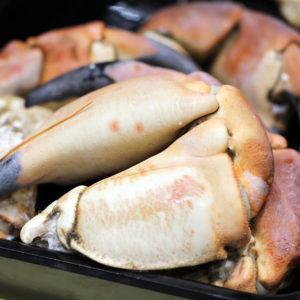 Pinces de tourteaux, vente en ligne de crustacés cuits et crus - morin marée albi