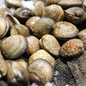 Amandes, vente en ligne de poissons frais, coquillages crus ou cuits, plateaux de fruits de mer et produits traiteur - Morin Marée Albi