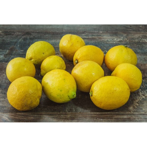 Citron de Sicile, vente en ligne poissonnerie Morin Marée à Albi, click and collect