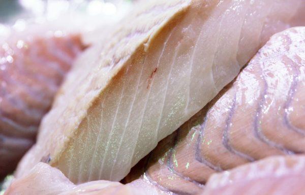 Dos de lieu noir, vente de poisson frais albi - dos de lieu noir - morin maree poissonnerie