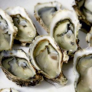 Huîtres fines d'Arcachon N°3, vente en ligne de bourriches d'huîtres - poissonnerie Morin marée Albi