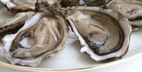 Huîtres fines de Bouzigues, vente en ligne de bourriches d'huîtres - poissonnerie Morin marée Albi