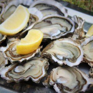 Huîtres fines de l'île de Ré n°3, vente en ligne de bourriches d'huîtres - poissonnerie Morin marée Albi